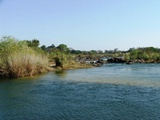 Looking upstream from the southern bank of the Okavango