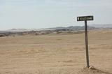 The Welwitschia Plains