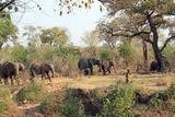 At Maramba River Lodge