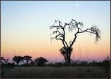 Khutze sunset