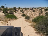 Mabuasehube Wilderness Trail