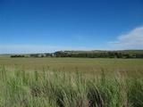 Beautiful Homestead, 19 Km North of Lindley