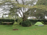 Small camping area in the garden adjacent to the house