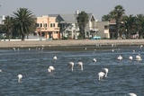 Part of Walvis Bay lagoon