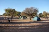 Campsite Twee Rivieren, Kgalagadi