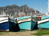 Hout Bay Harbour, Western Cape